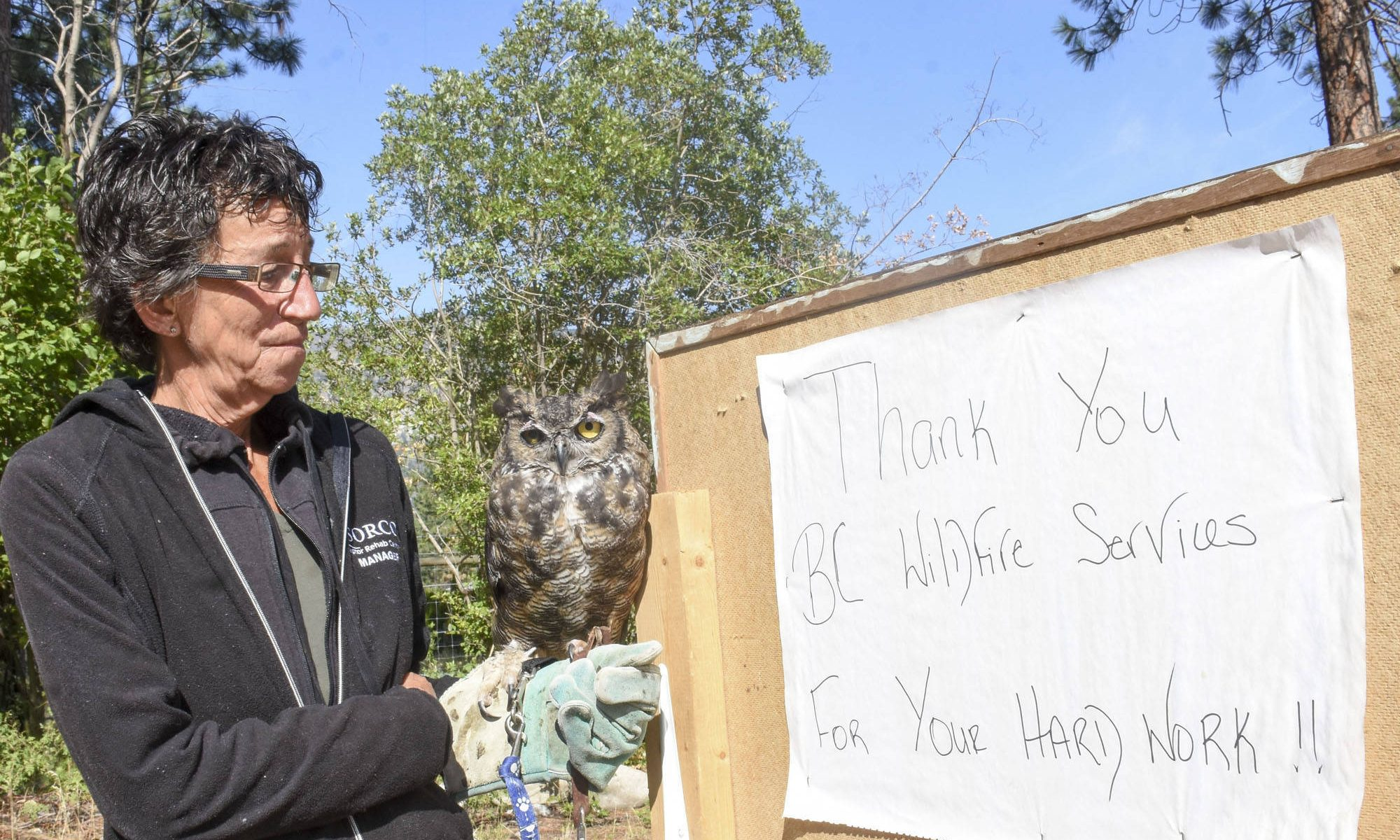 August: Forestry firefighters save raptor rehab centre