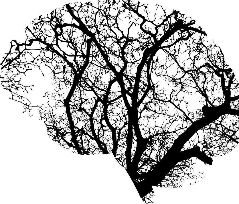ATAI, DemeRx pursue 'neurochemical reset' for addiction in $22M JV